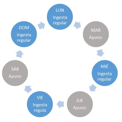 Dieta cetogenica ciclica (erc)